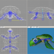 3D Model and Animate